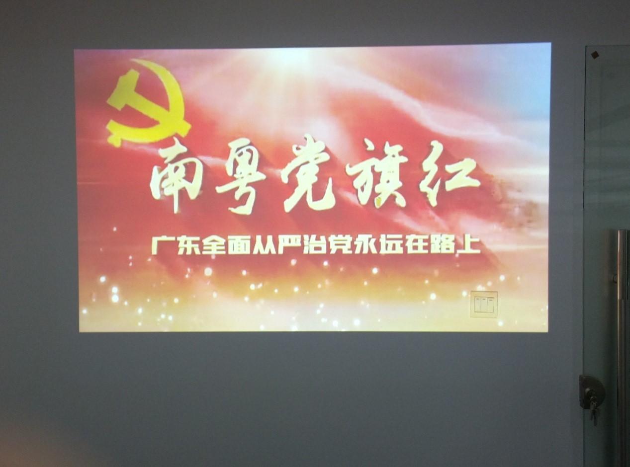 1.南粤党旗红学习会议